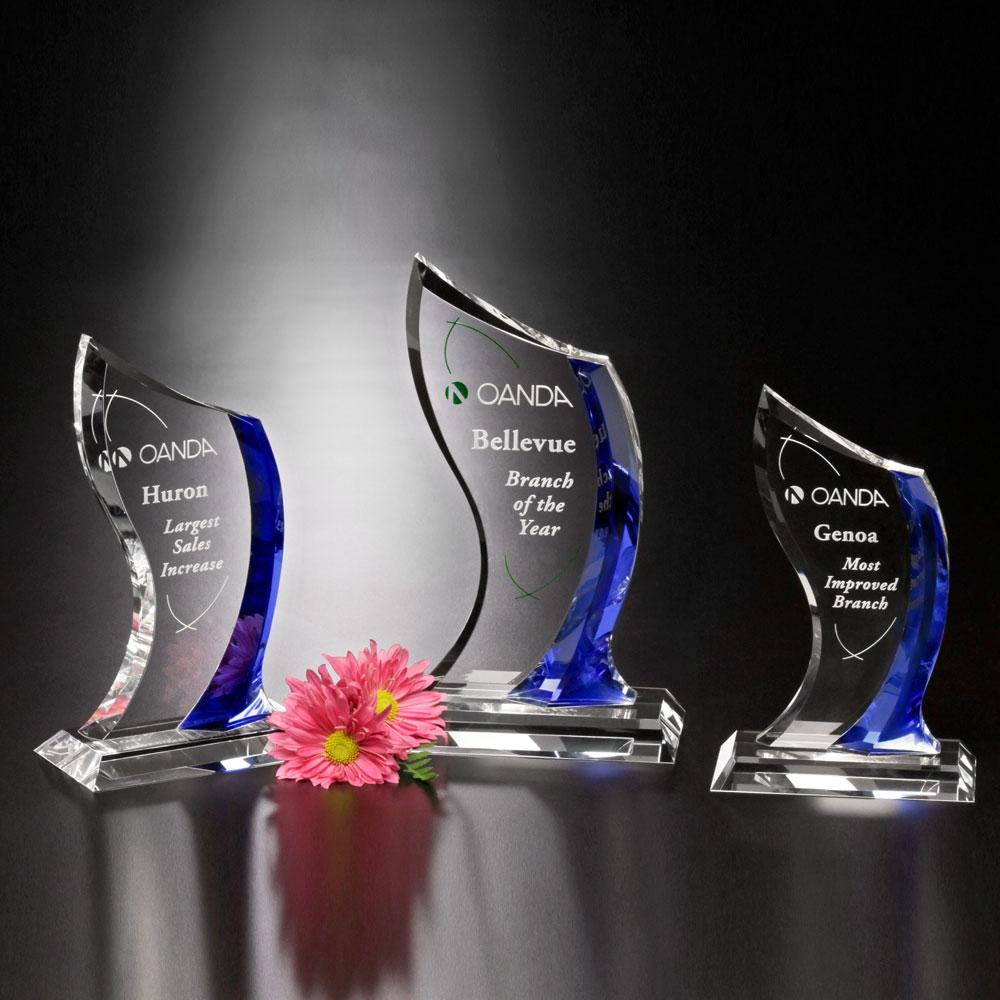 """Potomac Indigo Award 8"""""""