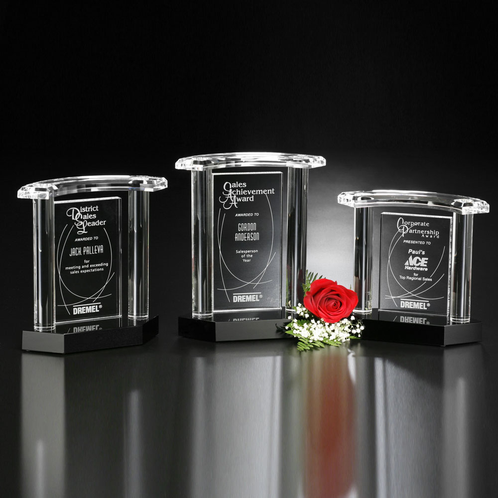 "Vanessa Award 8"""