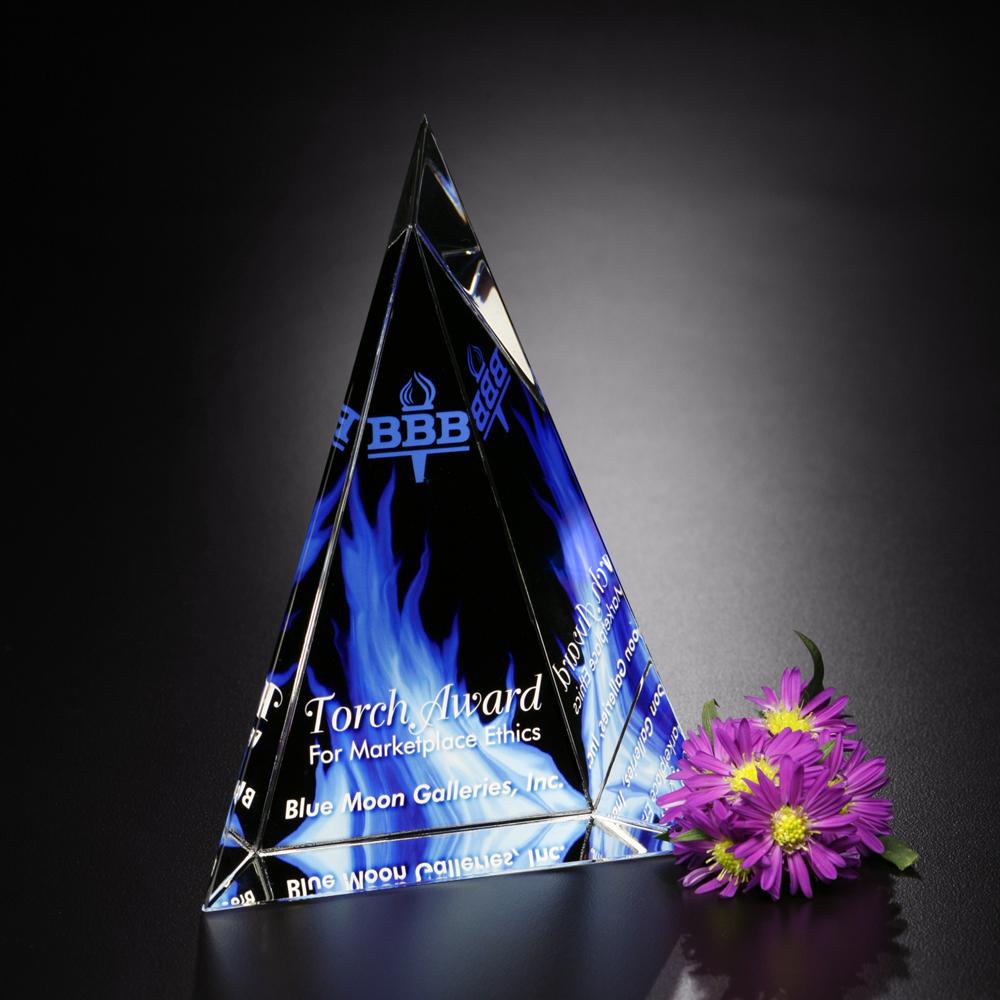 """Palisade Award 8"""""""