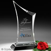 "Coburn Award 12"""