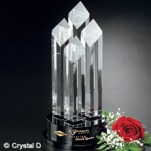 """Diamond Tiara 14"""""""