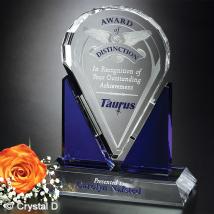 "Distinction Award 8-1/2"""