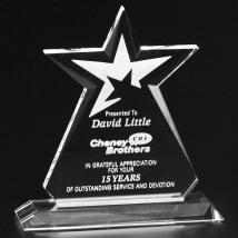 """Guardian Award 10-1/2"""""""