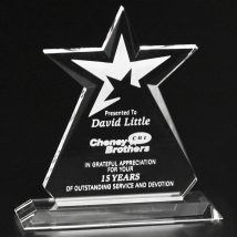 """Guardian Award 6-1/2"""""""