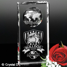 Kendall Global Award 6""
