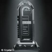 """Skyline Award 11-1/2"""""""