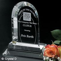 """Skyline Award 8"""""""