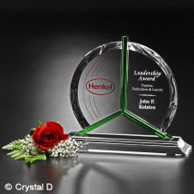 Tribute Award 9""
