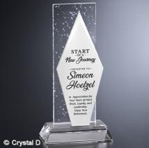 "Triton Award 9-1/2"""