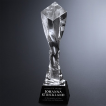 Twisted Diamond Optical Award 11""