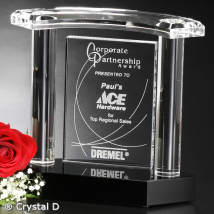 "Vanessa Award 7"""