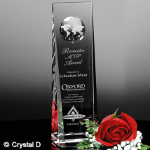 Westby Global Award 8""