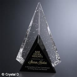 "Archer Award 9-1/2"""