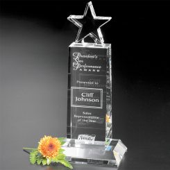 Champion Pedestal Star 10-1/2""