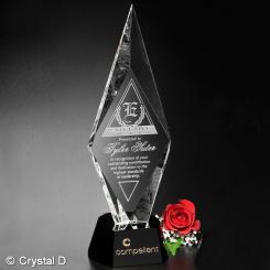 """Chaska Award 11"""""""