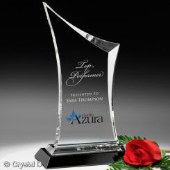 "Coburn Award 12"" Image"
