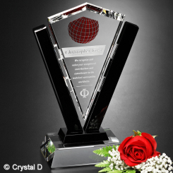 "Conquest Award 8"" Image"