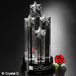 "Constellation Award 14"" Image"