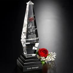 """Epitome Award 12"""" Image"""