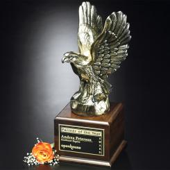 """Fearless Eagle 17"""" Image"""