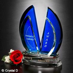 "Flight Indigo Award 8"" Image"