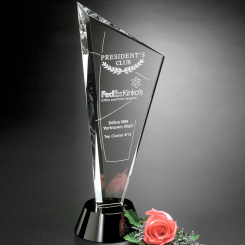 "Invincible Award 10"" Image"