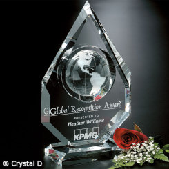 "Magellan Global Award 11"" Image"