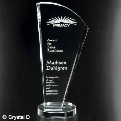 "Merit Award 9-1/2"" Image"