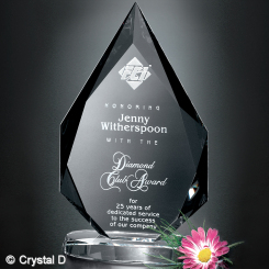 "Paragon Diamond 10"" Image"