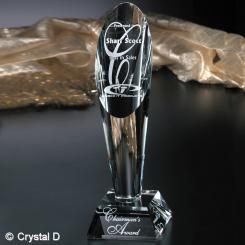 "Performer Award 11"""