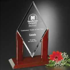 """Quantum Award 13"""" Image"""