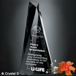 """Serenity Award 8"""" Image"""