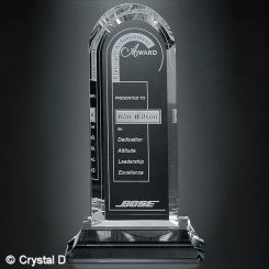 "Skyline Award 11-1/2"" Image"
