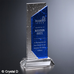 "Solstice Award 9-1/2"""