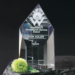 """Summit Award 5"""""""