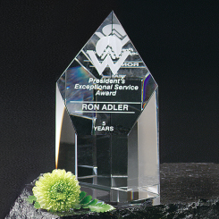 "Summit Award 5"" Image"