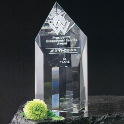 "Summit Award 6"" Image"