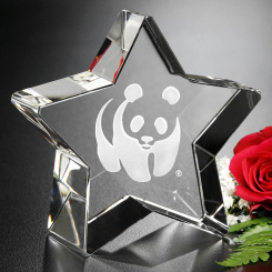 "Superstar Award 3"" Image"