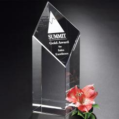"""Trinity Award 7"""" Image"""