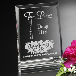 "Ventura Award 6"" Image"