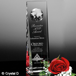 "Westby Global Award 10"" Image"
