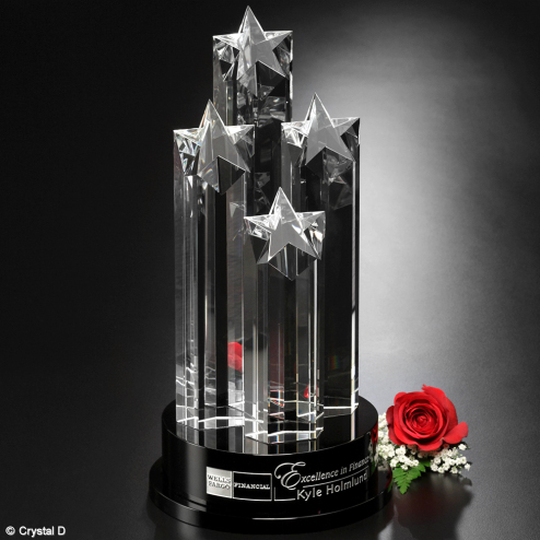 Constellation Award 14""