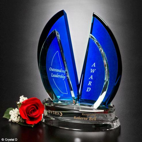 "Flight Indigo Award 10"""