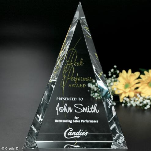 """Palisade Award 6"""""""