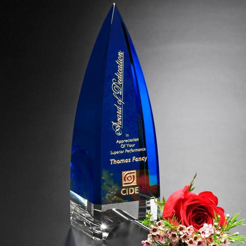 "Culmination Indigo Award 10"""