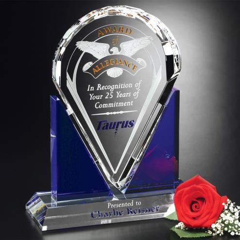 "Distinction Award 10-1/2"""