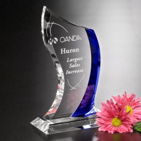 """Potomac Indigo Award 9"""""""